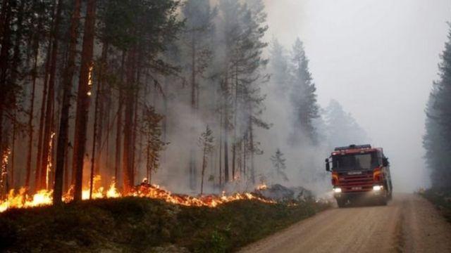 Ảnh chụp vụ cháy rừng tuần trước ở Karbole, miền trung Thụy Điển