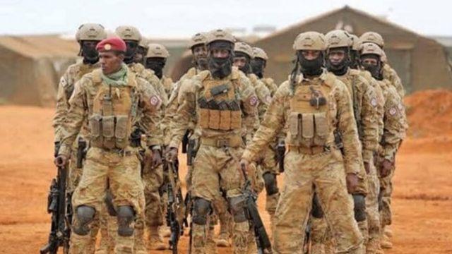 Militariga komandoska ah ee Danab