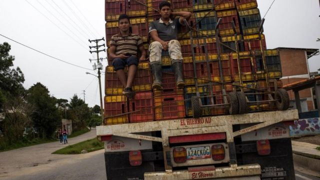 Food transportation is one of the sectors most affected by the diesel shortage.