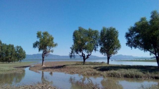 টেকনাফে নাফ নদী পার হয়ে হাজার-হাজার রোহিঙ্গা বাংলাদেশে আশ্রয় নিয়েছে