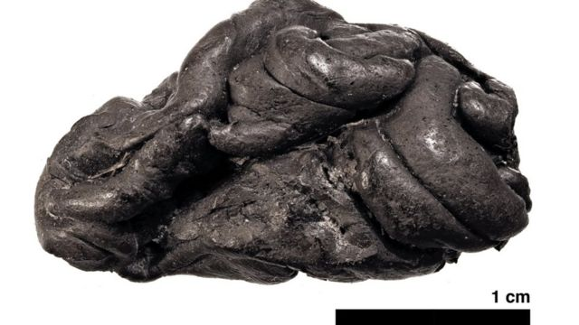 Piece of 5,700-year-old birch pitch from Syltholm, southern Denmark