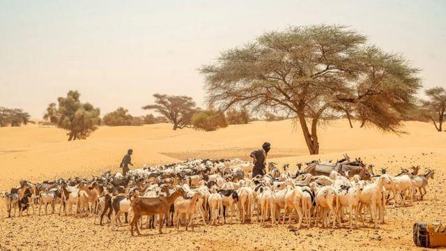 L'ère du commerce transsaharien a amené de nombreux groupes ethniques différents en Mauritanie