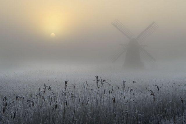 Andrew Bailey: niebla congelada y escarcha
