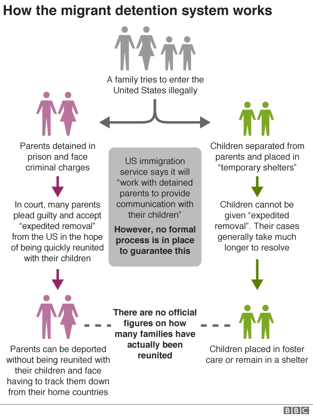 Chart showing how the detention process works