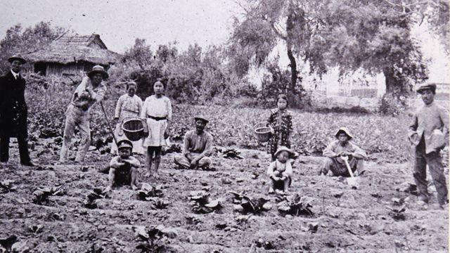 Camponeses japoneses no Peru