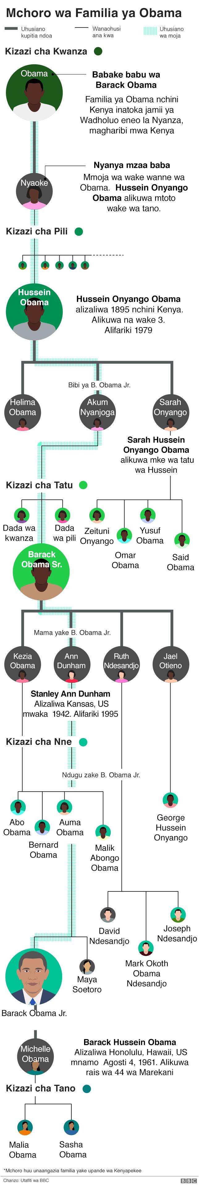 Mchoro wa familia ya Obama