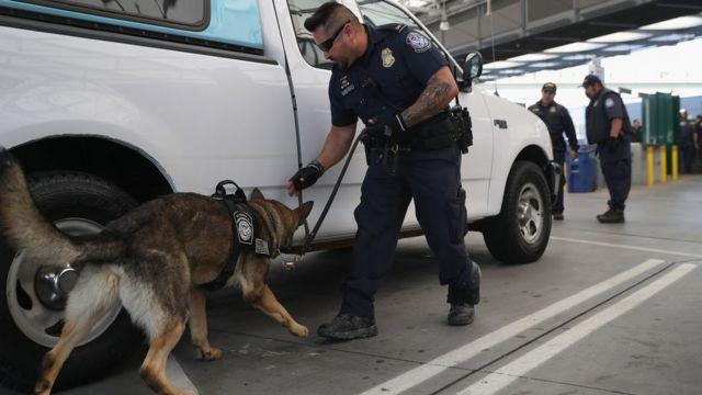 Un funcionario de la CPB revisa un automóvil junto con un perro anti narcóticos.