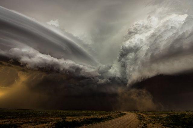 Camelia Czuchnicki: choque de tormentas