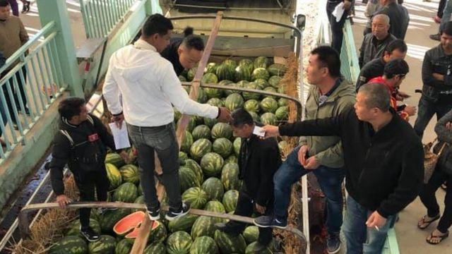 တရုတ်ဝယ်လက်ကအကောင်းဆုံးအသီးတွေကိုသာယူပြီးကျန်အသီးတွေကို ပယ်သီးအဖြစ် စွန့်ပစ်