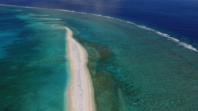 Ocean wilderness 'disappearing' globally