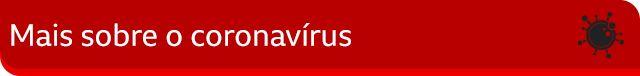 Mais sobre o coronavírus