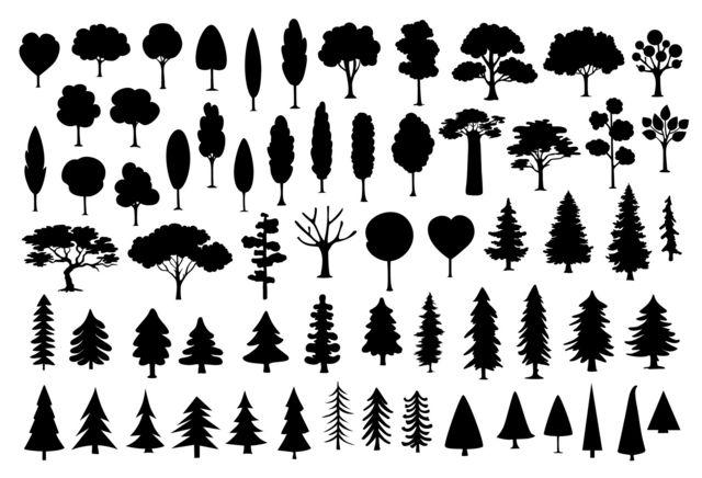 Una gráfica de tipos de árboles