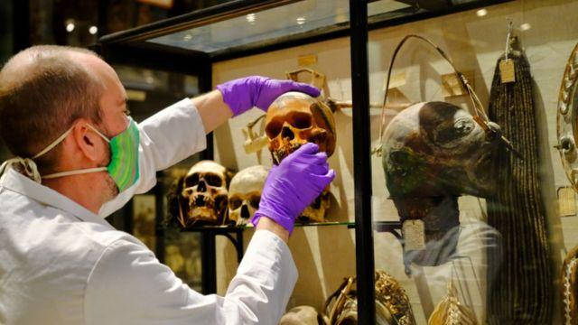 Cabeça sendo retirada de exibição no museu