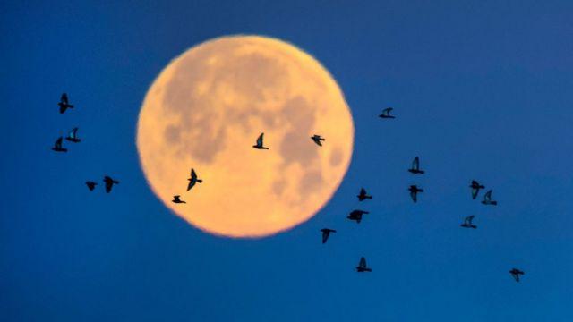 Así se vio la súper Luna de nieve desde California, EE.UU. en febrero del año pasado.