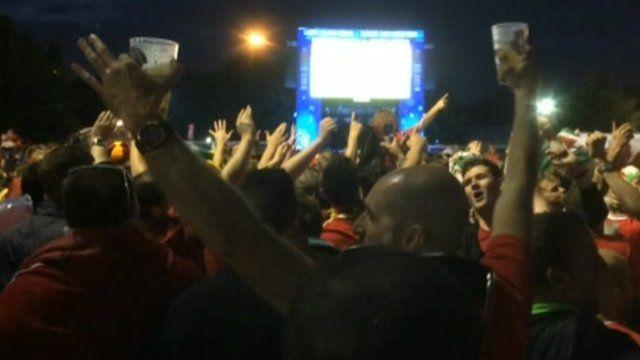 Wales fans in Lille