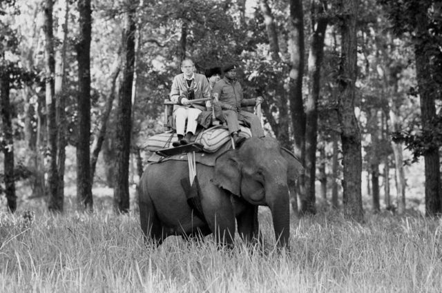Duke of Edinburgh sitting atop an elephant while visiting the Kanha Game Reserve, 1983