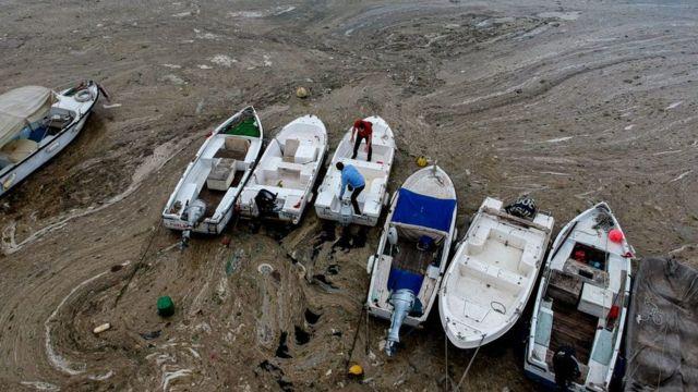 Marmara Denizi'nde yaşanan müsilaj birikmesi çevresel kaygıları derinleştirdi.