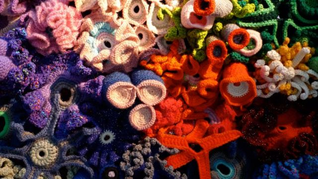 Detalle de arrecife de coral