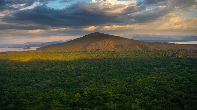 Florestas da Etiópia