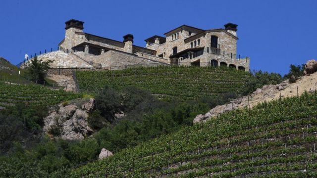 Vineyards in the Malibu region of California on April 19, 2017.