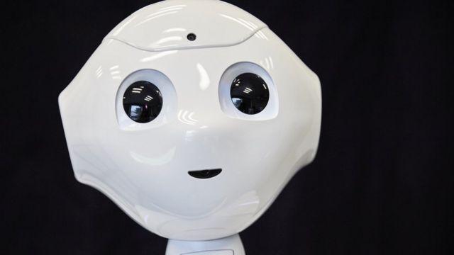 法国一项人工智能研究项目涉及的人型机器人
