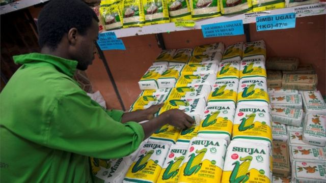 Letter from Africa: Why has Kenya's staple food gone into hiding?
