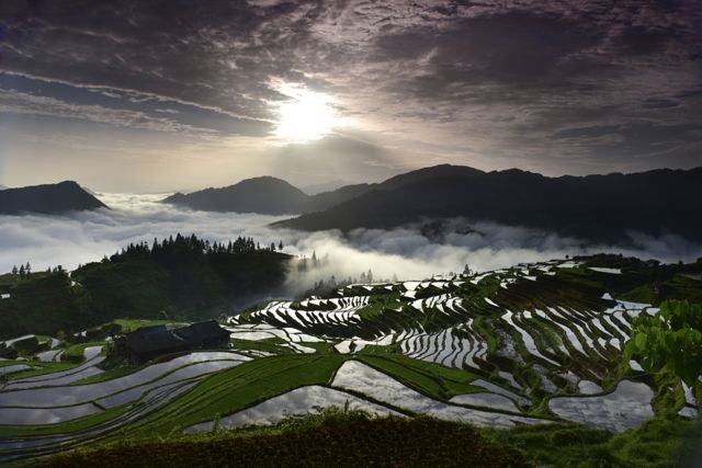 The Miao Terraces by Mingli Tian