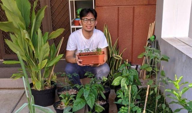 petani kota berkebun dari rumah
