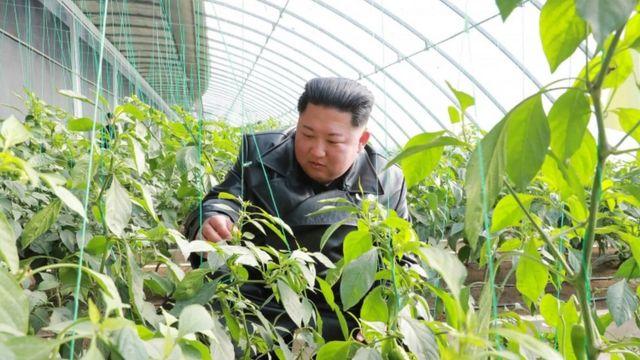 کیم جونگ-اون، رهبر کره شمالی. خانواده کیم بر سه نسل در کره شمالی حکومت کردهاند