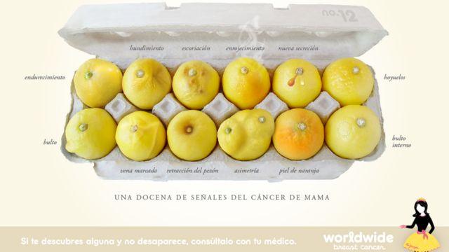 """Imagen de la campaña """"Conoce tus limones"""", que muestra una docena de limones que ilustran los síntomas del cáncer de mama"""