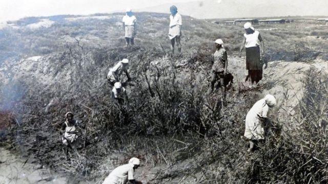 Орус аялдар сугат каналын камыштан тазалоодо. Оор жумуш, тажоо, аптап Тажикистанга көчүп келгендерди дайыма коштогон. Вахш 1937-жыл.