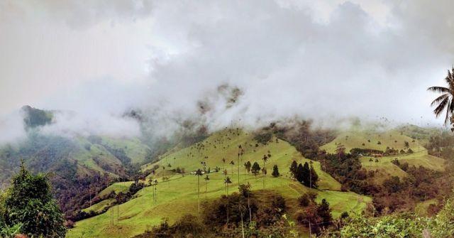 Vista del Valle de Cocora, en Salento, Quindio, Colombia.
