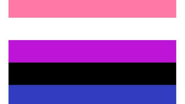 The pink, white, purple, black and blue genderfluid flag