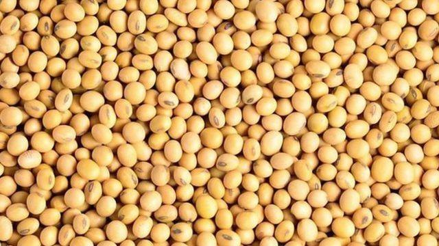 大豆是全球四大消费食品之一。(photo:BBC)