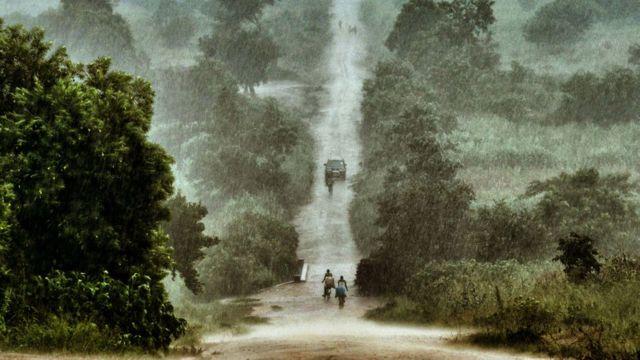 Floresta do Maláui
