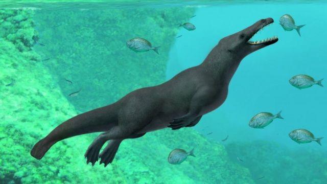 Ilustración artística de la ballena con 4 patas de A Gennari.