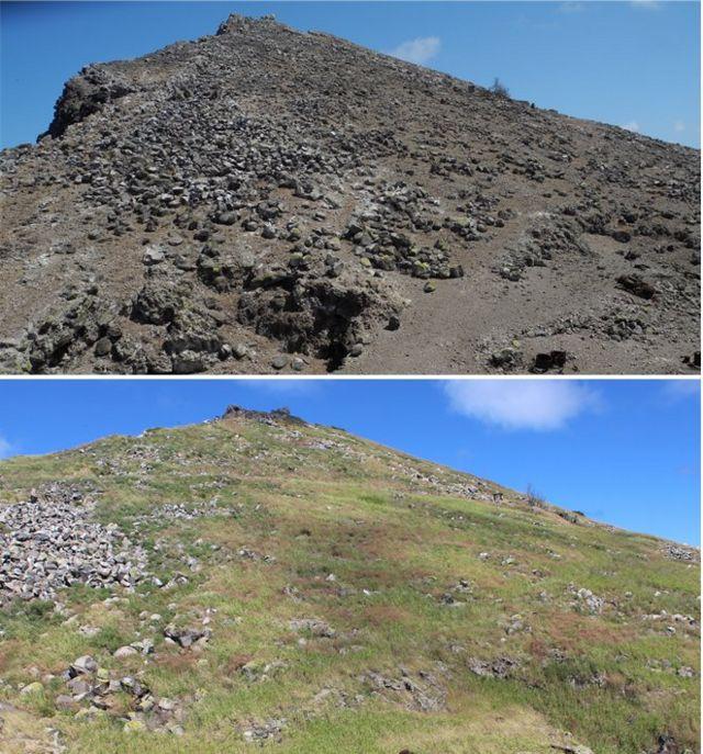 Fotos de la isla en 2012 y 2020