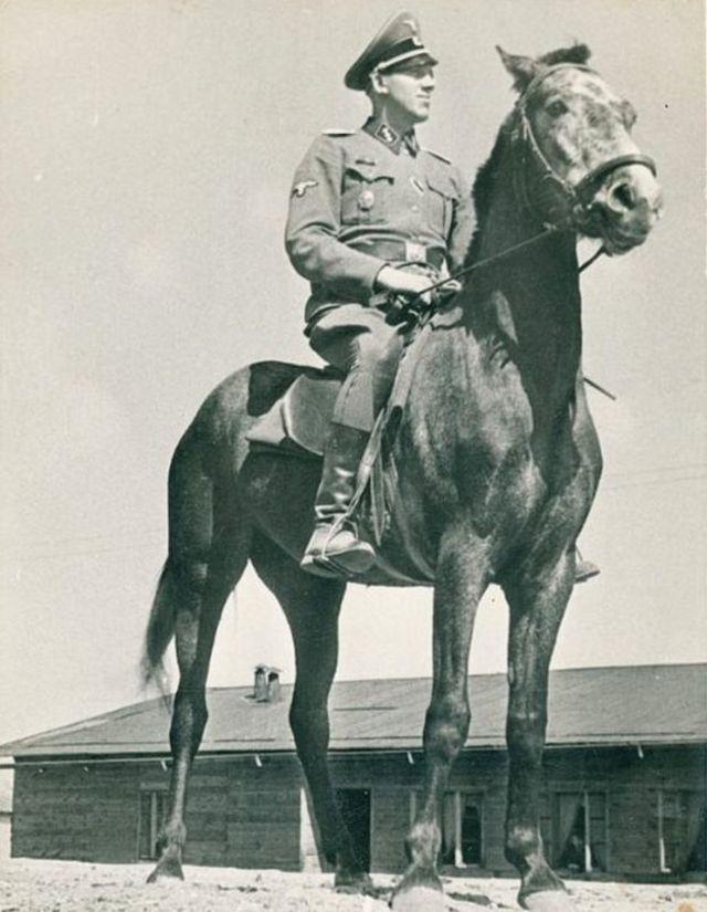 Niemann em cima de cavalo