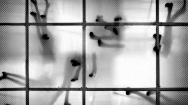 sombras sobre un vidrio