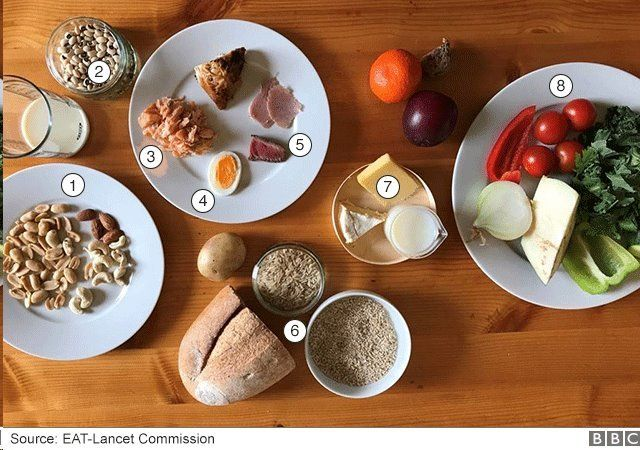 رژیم غذایی
