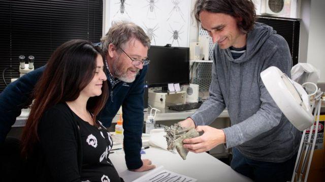 araştırmacılar kemiğe bakıyor