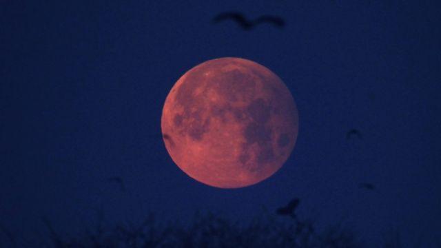 سنہ 2017 کا پہلا نیم چاند گرہن لاہور میں دیکھا گیا