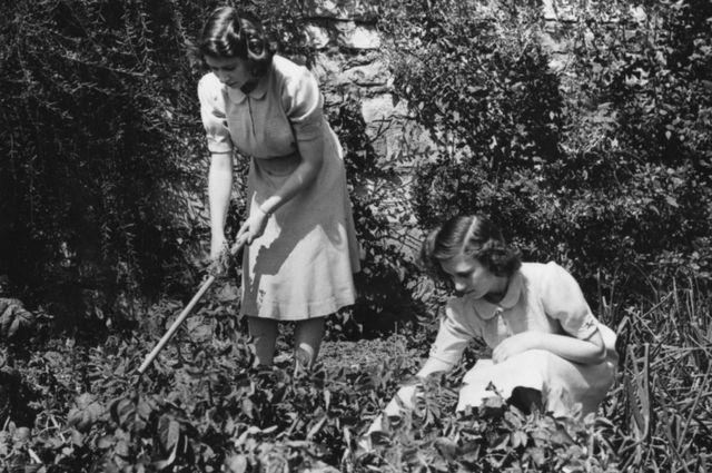 Kraliça II Yelizaveta və kiçik bacısı şahzadə Marqaret Vindzor malikanəsində. Avqust, 1943-cü il.