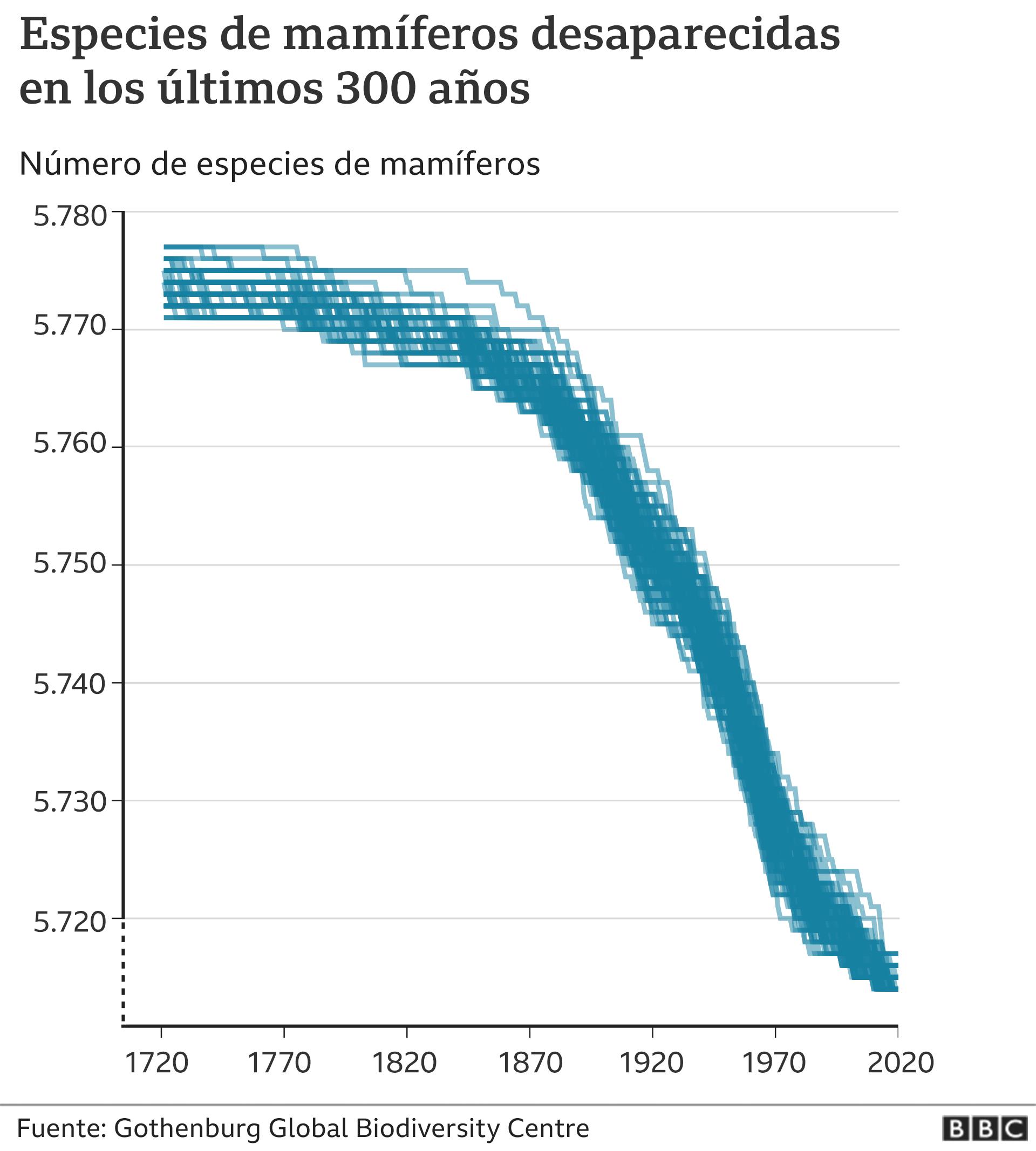 Especies de mamíferos desaparecidas: gráfico.