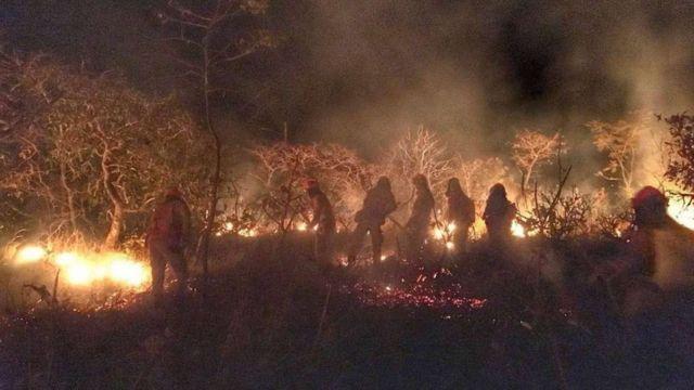 Incêndio na Caatinga