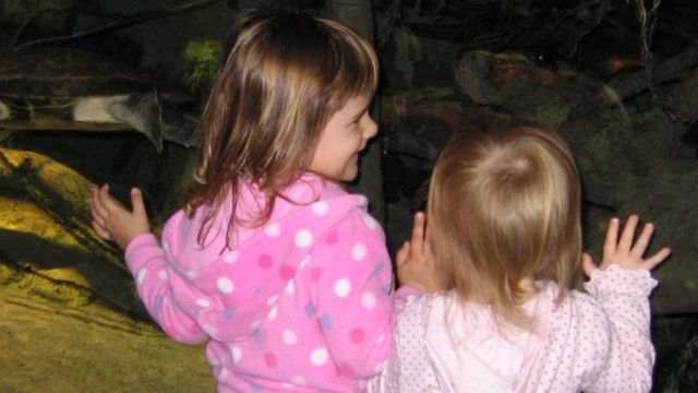 Hijas de donantes de esperma