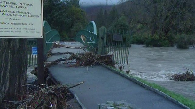Uprooted trees in Keswick caught in bridge railings