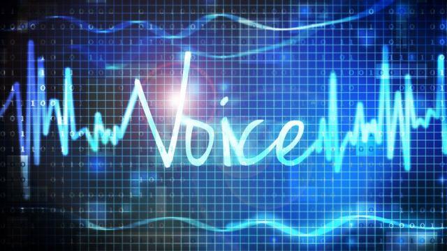 gráfico de la onda de sonido de voz