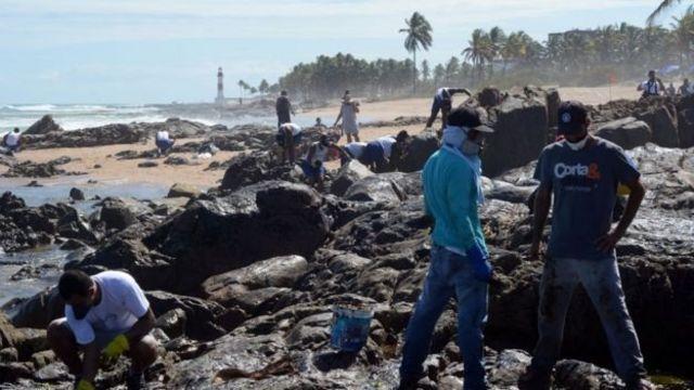 Voluntários retiram óleo