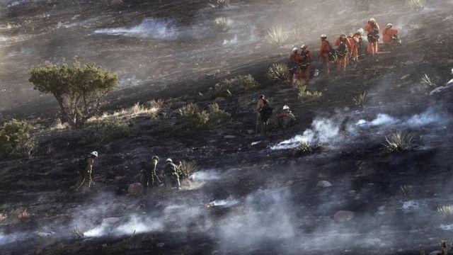 آتش سوزی تیک در شمال لس آنجلس تاکنون ۲۵ درصد مهار شده و مردم به خانه هایشان برگشته اند